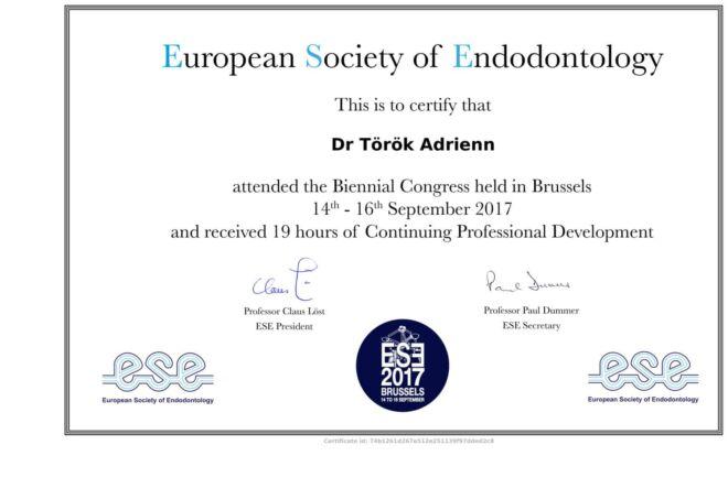 Dr. Török Adrienn, mikroszkópos gyökérkezelés oklevél - Society of Endodontology certificate