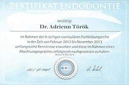 Oklevél - Dr. Török Adrienn