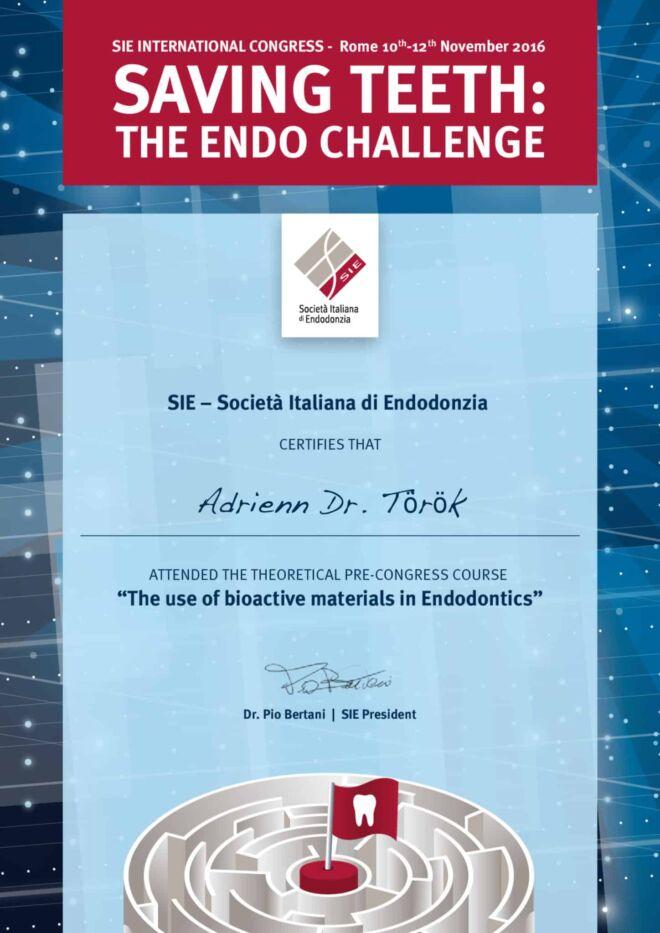 Dr. Török Adrienn, mikroszkópos gyökérkezelés oklevél - The Endo Challenge