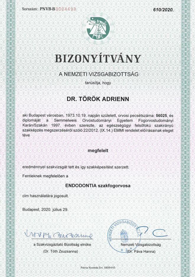 Dr. Török Adrienn fogorvos endodontia