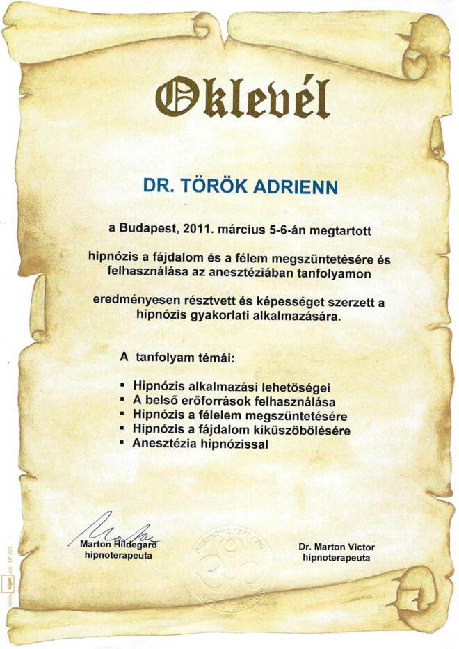 Dr. Török Adrienn fogorvos oklevél